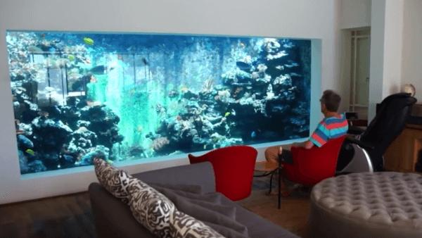 Aquarium Wohnzimmer Einfach On Innerhalb Wonderful Fotografie Patio Neu 600 338 2