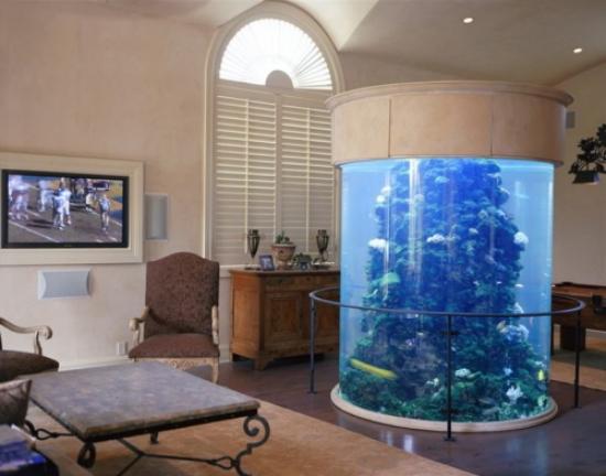 Aquarium Wohnzimmer Kreativ On überall Das Einrichten Als Im Hausinterieur 9