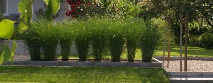 Moderner Garten Mit Gräsern Stilvoll On Modern In Bezug Auf Moderne Gartengestaltung Wapdesire Best 4