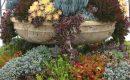 Deko Garten Glänzend On Andere Für 35 Wundervolle Ideen Den Mit Sukkulenten 9