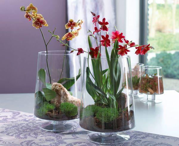 Gestaltungsideen Durch Orchiden Ausgezeichnet On Ideen Innerhalb Gestaltung Up To Date Auf 3