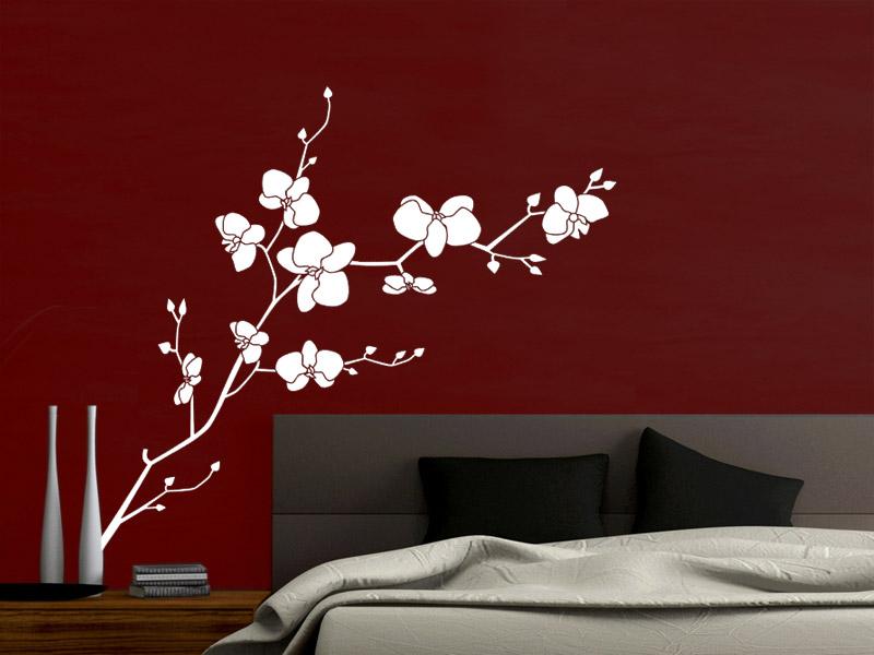 Wandtattoo Weiß Schlafzimmer Erstaunlich On Innerhalb Orchidee Mit Schönen Blüten Wandtattoos De 2