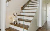 Wandverkleidung Treppenhaus