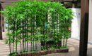 Bambus Als Sichtschutz Nett On Andere In Featured Im Garten Idee Stoecke Begruenung Sitzbank 8