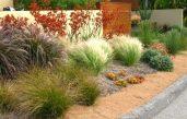 Gartengestaltung Mit Gräsern Und Steinen