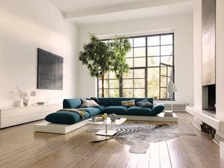 Moderne Wohnzimmer Interessant On Modern Innerhalb Ideen Inspiration Für Homify 5