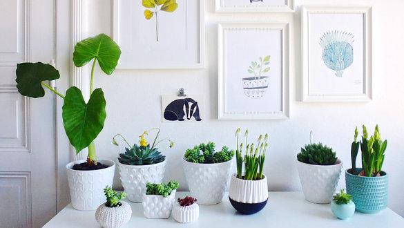 Wohnzimmer Deko Ideen Stilvoll On überall Die Schönsten 6