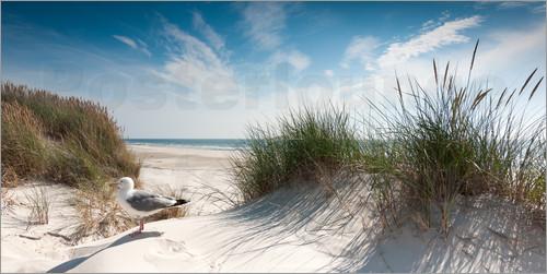 Bilder Strandmotive Unglaublich On Andere Mit Strandposter Ab 7 90 Online Bestellen Gratisversand Posterlounge 3