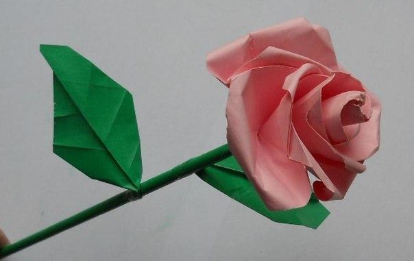 Blumen Falten Aus Papier Fein On Andere Und Rose Basteln Anleitung DekoKing 8