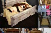 Diy Shabby Chic Pet Bed