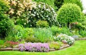 Englische Gärten Gestalten