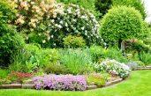 Englischer Garten Anlegen