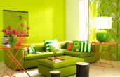 Gelb Grün Wandfarbe