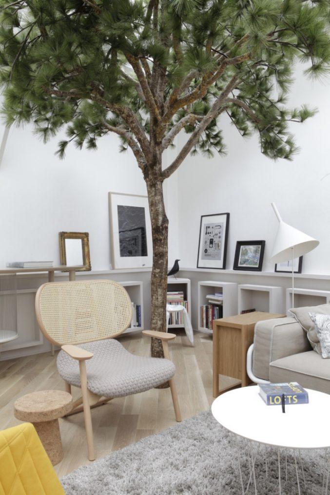 Naturbaum Deko Stilvoll On Andere In Uncategorized Kleines Dekoration Baum Und Home 8